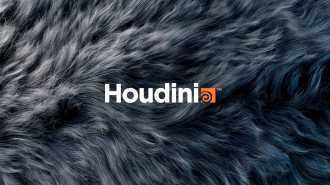 Houdini1.jpg